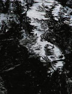 REFLETS SUITE LOIRE 058 - Copie - Copie